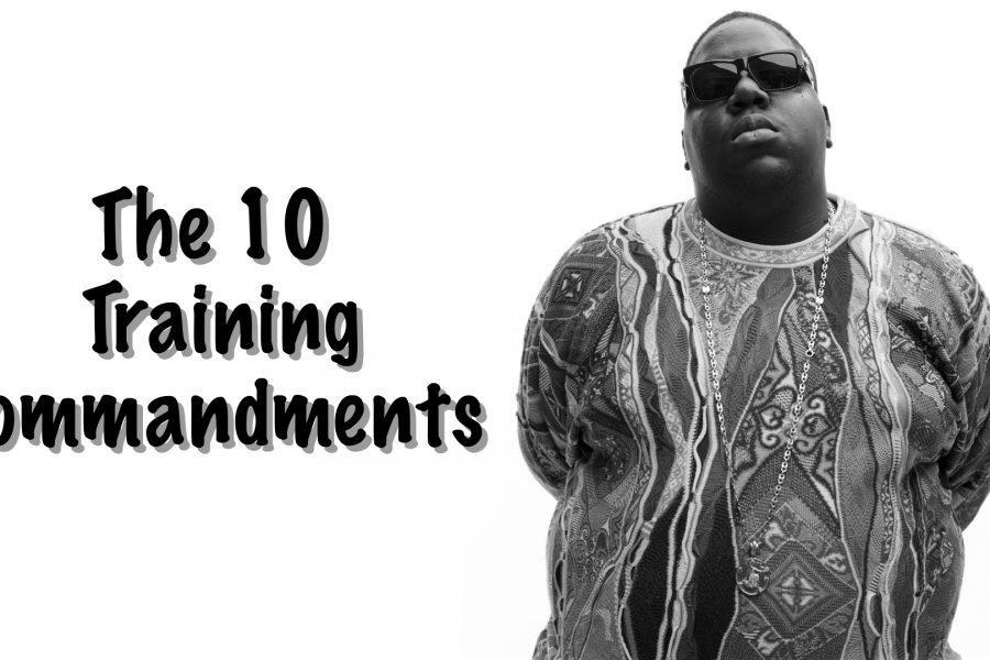 The 10 Training Commandments