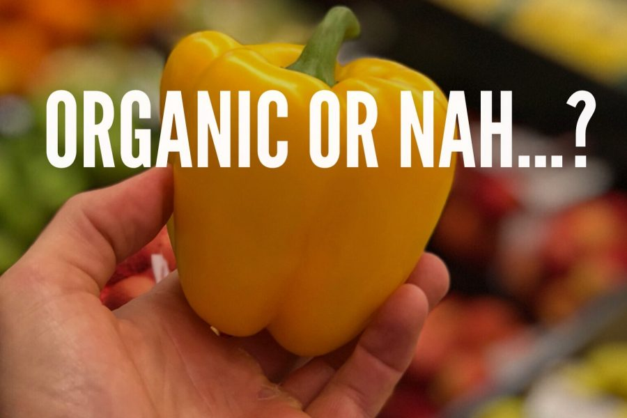 """Eating Organic"" – All Hype? Or Vital For Health?"